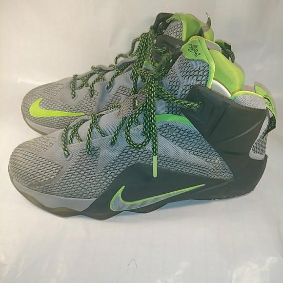 Nike Lebron 12 Dunk Force hightop gym shoes